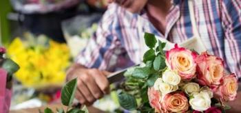 Долговая яма для цветочников