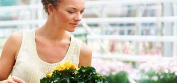 Критерии выбора растений для магазина