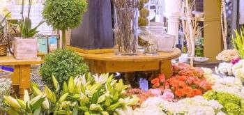 Выбор типа цветочного магазина