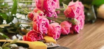 Купить или открыть цветочный магазин
